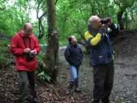 An image of Avon Valley Woodlands – Walking with Cameras